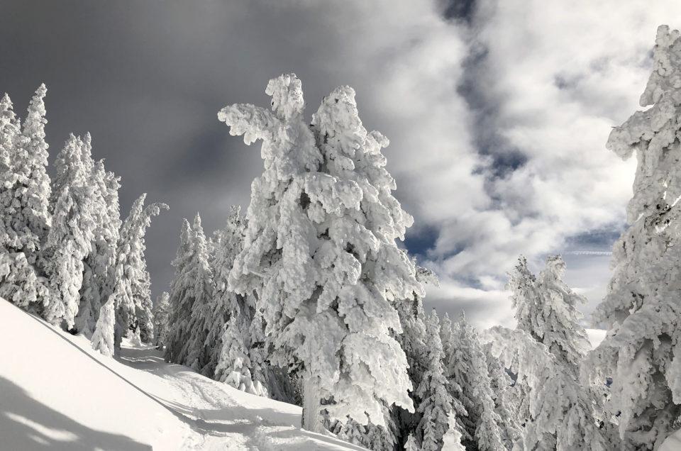 Patscherkofel Schnee